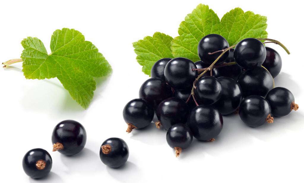 Coacazul negru detoxifica organismul, regleaza activitatile hormonale, combate anemia, stimuleaza cresterea si intareste oasele, ajuta la regenerarea organismului si prelungesc viata.