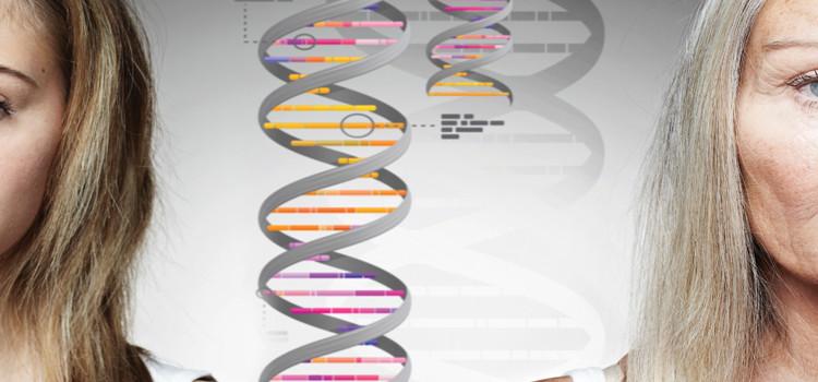 Telomerii și frumusețea